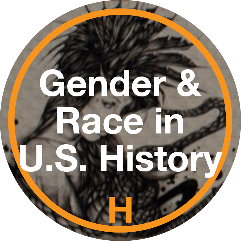 Gender and Race in US Politics Honors