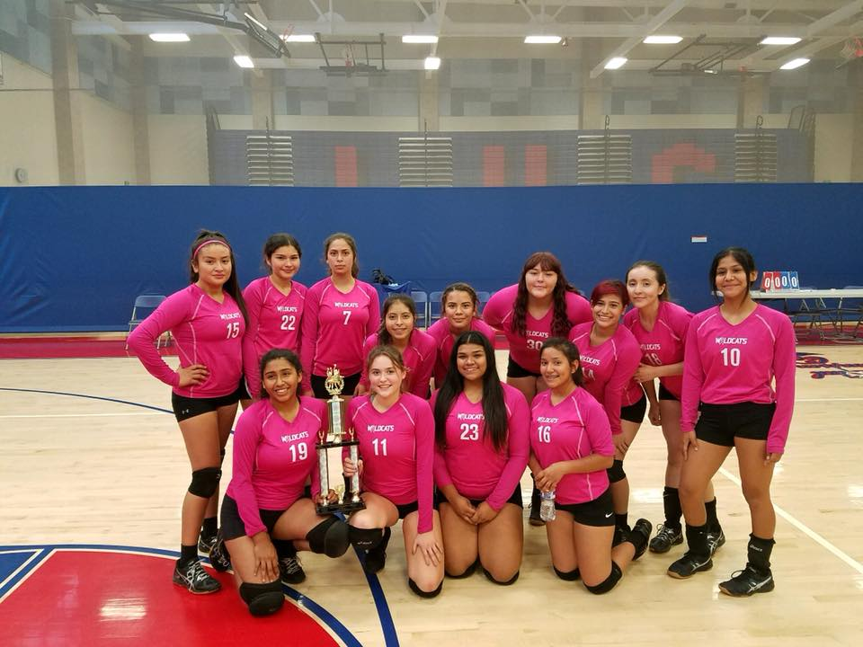 Volleyball continues successful season